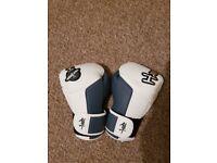 hayabusa 14oz boxing gloves