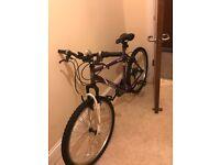 Lady's mountain bike