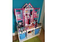Doll House Monster High Ponys and Elsa