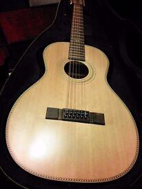 Electro-Acoustic Guitar 12 String Paul Brett VE8000PB-12 With Original Case