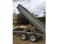 Electric tipper trailer 8x5
