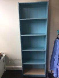 Blue IKEA Bookcase £10