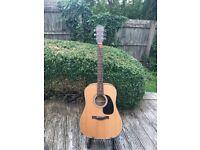 Farida D-8X Guitar