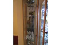 display cabinet nice cond with led fitting for 3 led lights asking £65 ono