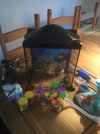 Small fish tank and accessories