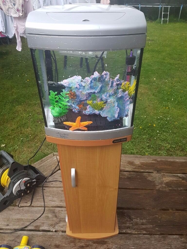 Fish for first tank - Aqua Start 320 Tropical Fish Tank And Stand Excellent Condition Perfect First Tank
