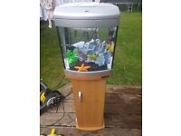 Aqua start 320 tropical fish tank and stand - Excellent condition - perfect first tank