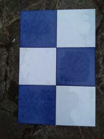 Ceramic tiles 20cm x 20cm. 52 Blue & 54 White