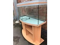Rena life 260 bow front marine tropical cold water fish tank with setup