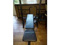Everlast bench & weights