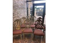 6 shabby chic dining chairs + 2 carvers