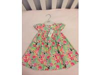 Brand New - Bluezoo baby 6-9 months girls dress