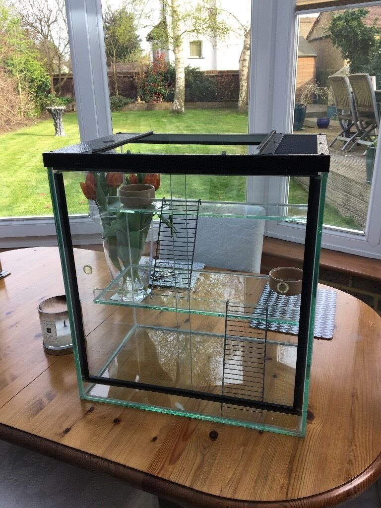 Luxury easy-clean Hamster/Gerbil/Mouse glass cage/tank/Terrarium ...