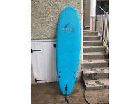 6 Foot Surf Board