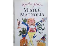 2 children's books: Mr Magnolia & Knights Puzzle activities books