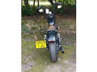 2009 Harley Davidson 883 Custom