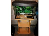40 litre pets at home fish tank with stand