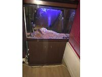 fish tank for sale 150 collection only