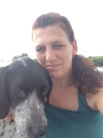 Mature, reliable professional lady offering a pet sitting and dog walking service, fully insured