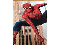 Spider-Man canvas triptych photo art