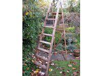 A-frame step ladder for interior design use