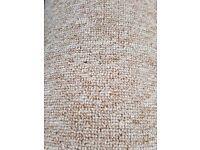 "13'*13'1"" carpet remnant"