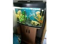 64l fish box full setup