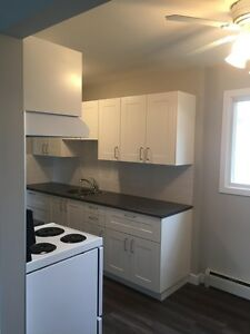 Apartment in Delton Area close to Londonderry, Northgate and...