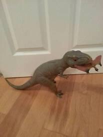 T - rex dinosaur