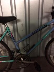 Raleigh Montana Mountain bike