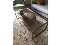 Habitat copper coffee table for sale