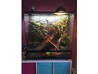 Full extra large all glass vivarium. 90x90x45. Heat lamp, uv housing, bulbs included. Bark/plants