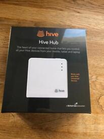 Hive Hub BNIB