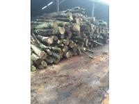 Firewood logs oak ash elm
