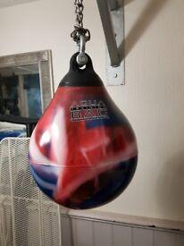 Aqua Headhunter Training water filled punch Bag
