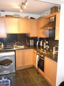 Bright, spacious 2 double bedroomed flat to rent in Buccleuch Terrace - £800 pcm