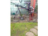BIKES FOR SALE = A RETRO RALEIGH PHONIX .. AND A FIXIE BIKE