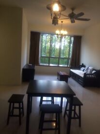 2 bedroom Singapore Apartment Rental from SGD2,500 per month