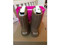 Size 6 UGG Boots - Short Chestnut. Brand new in the box.