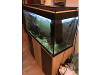 200L freshwater tank, with peaceful community fish and external filter