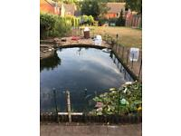 Koi pond equipment pump Uv filter river stones