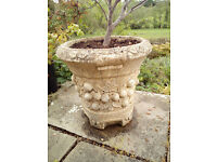 Garden Urn/Container perfect for plants