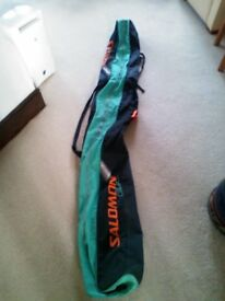 Double skis bag