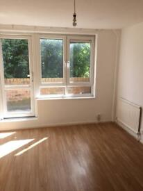 Refurbised flat for rent close to hackney downs , dalston