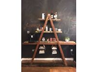 Vintage Ladder Shelf / Storage / Kitchen Storage