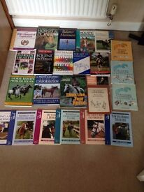 Horse book bundle BARGAIN