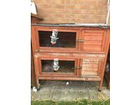 Single and double rabbit hutches