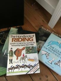 4 horsey books!