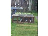 Rabbit Run & Hutch