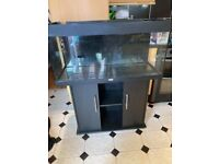 Juwel 180 litre fish tank and black ash stand no lid